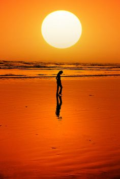 gorgeous sunset and photo Shadow Silhouette, Lonely Girl, Orange Aesthetic, Instagram Story Ideas, Beach Pictures, Cool Photos, Scenery, Poster, Silhouettes