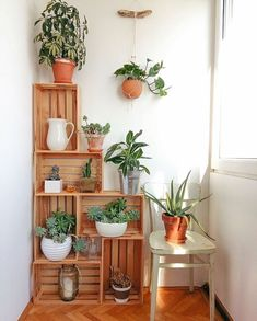 Crates in my kitchen corner. Crates as plant stands. Crate construct… Crates in my kitchen corner. Crates as plant stands. Wood Crate Diy, Wood Crates, Wood Crate Shelves, Ikea Crates, Wooden Crates With Plants, Uses For Wooden Crates, Wooden Boxes, Crate Decor, Crate Bookshelf