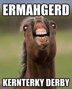 ermahgerd kernterky derby - ERMAHGERD HORSE