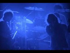 """youtube link~ Pearl Jam - Release (Live Arnhem '06) """"I'll ride the wave, where it takes me.  I hold the pain, release me."""" Chills...."""
