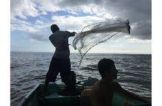 El Caribe costarricense: contra la ola racial y el dulce encanto del mercado, por Juan Carlos Martínez Prado / FronteraD (Julián Ugalde con la atarraya)