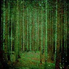 KLIMT - Pine Forest