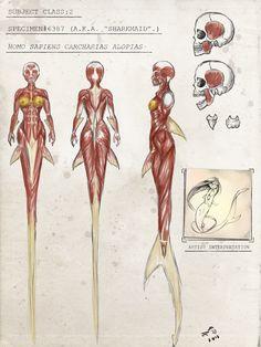 48 best selachii images in 2019 mermaids, merfolk, siren mermaidsharkmaid pesquisa google so, i know that this character is highly based on