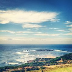 Long Reef headland. A pristine view of the ocean