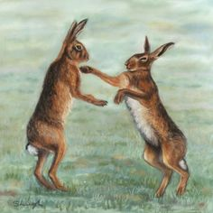 ARTFINDER: Boxing Hare sketch by Sarah Leigh - A preliminary sketch that turned out a little more detailed than I expected as I was having so much fun.   Two boxing hares in a frosty field. This is quit...
