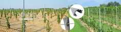 we are the largest designer and manufacturer of a complete line of innovative trellising products for your vineyard.we specialize in quality trellising