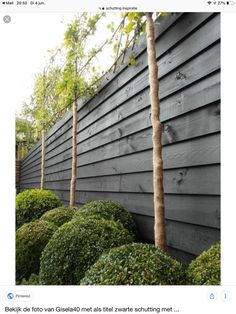 10 Garden Fence Ideas to Make Your Green Space More Beautiful Tags: wood garden fence, bamboo garden fence, backyard garden fence, modern garden fence, etc. Backyard Fences, Garden Fencing, Black Garden Fence, Outdoor Landscaping, Green Fence, White Fence, Pool Fence, Garden Pool, Garden Planters
