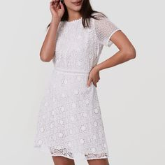 For the Zimmermann Roamer Day Dress