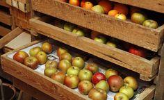 Winteräpfel bleiben bei fachgerechter Lagerung lange frisch