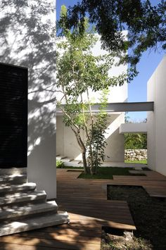 Contemporary House Among Trees by Muñoz Arquitectos Asociados