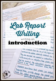 professional case study ghostwriting website for school
