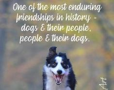 Dogs have a way of finding the people who need them. Animal Lover Quotes, Dog Quotes, Dog Best Friend Quotes, Lovers Quotes, I Love Dogs, Puppy Love, Animal Line Drawings, Pet Remembrance, Dog Signs