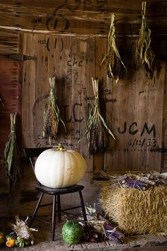 .Love white pumpkins