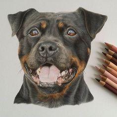 By @abbeyfusarelli_art by art.drawings_m