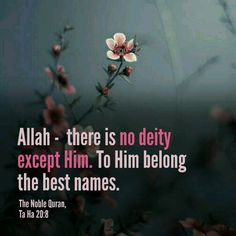 There is no god, except Allah