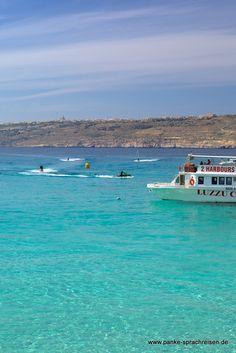 Malta Malta, Waves, Outdoor, Language School, Outdoors, Malt Beer, Ocean Waves, Outdoor Games, Outdoor Life