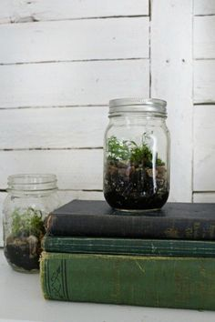 Using moss in decorating. Joanna Gaines - Magnolia Homes - Fixer Upper