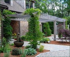 Western Red Cedar Attached Pergola - The home's architecture and shingled siding are superbly complemented by the rich color of an enduring pergola that is seen here to encourage climbing plants. Note how the cross members are notched over the main beam.