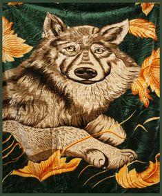 Teplé deky na posteľ lacné Animals, Animales, Animaux, Animal, Animais