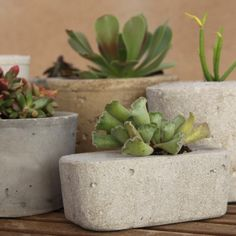 little planters made from cement and using recycled containers as molds -- very cool!