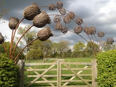 Detail Collective | Outside Spaces - Willow Creations| Image: Tom Hare