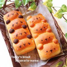 Panda and Bear Bread