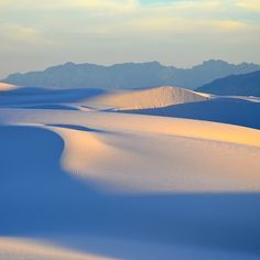 In southcentral New Mexico, west of Alamagordo, are the world's largest dune fields of gypsum sand. The brilliant white sand dunes cover an area of nearly 230 square miles, with many dunes rising to over 60 feet.