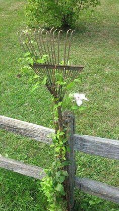 Garden art  #GardeningArchitecture