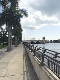 The running path on the intracoastal waterway on the edge of campus!