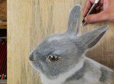 ALLPE Medio Ambiente Blog Medioambiente.org : Hiperrealistas animales sobre madera