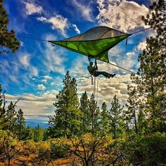 Tentsile Stingray tree tent - the ultimate tree house. Order now Tree Camping, Camping World, Camping And Hiking, Family Camping, Camping Hacks, Camping Ideas, Camping Outdoors, Backpacking, Tentsile Tent