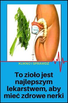 To zioło jest najlepszym lekarstwem, aby mieć zdrowe nerki Health, Food, Health Care, Salud, Meals