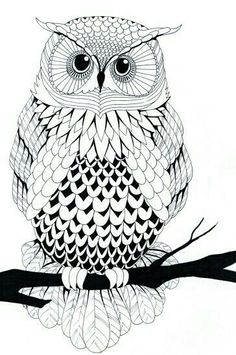 Owl Free Printable Coloring Pages –> If you're looking for the top coloring books and writing utensils including gel pens, […] Make your world more colorful with free printable coloring pages from italks. Our free coloring pages for adults and kids. Owl Coloring Pages, Free Printable Coloring Pages, Coloring Books, Free Coloring, Coloring Sheets, Black And White Owl, Owl Art, Doodle Art, Art Drawings