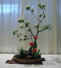 ikebana tulips by digizen, via Flickr