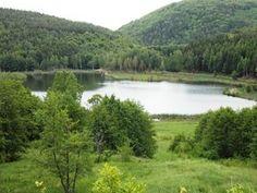 În România sunt 8 peisaje unice pe Glob, dar puțini le cunosc. Sunt roman si ma mandresc cu tara mea! Turism Romania, Romania Travel, Tourist Places, Homesteading, Places To Visit, Camping, River, Rustic Homes, Outdoor