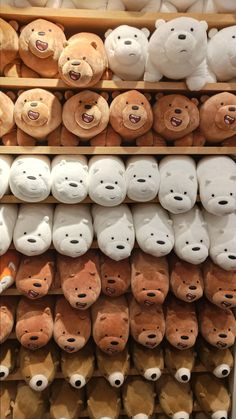 Bear Wallpaper, Tumblr Wallpaper, Girl Wallpaper, We Bare Bears Wallpapers, Cute Wallpapers, Osos Cartoon Network, Aesthetic Iphone Wallpaper, Aesthetic Wallpapers, Mode Ulzzang