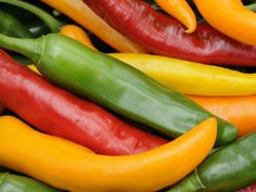 Learn hot to grow peppers and chilis...