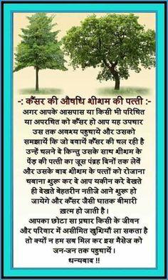Health Tips In Hindi - Gharelu Nuskhe Health Facts, Health And Nutrition, Health And Wellness, Health Fitness, Health Care, Natural Health Tips, Good Health Tips, Health And Beauty Tips, Ayurvedic Remedies