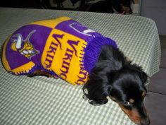 more photos 7b061 a8ca2 12 Best Minnesota Vikings TAILgaters images in 2015 ...