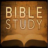 Daily Bible Study