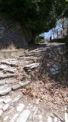 Kalderimi in Milies Bridges, Greece, Stairs, Outdoors, Plants, Greece Country, Ladders, Stairway, Outdoor