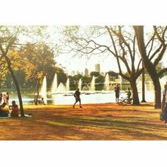 Parque Ibirapuera em São Paulo, SP