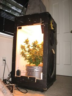 Small Grow Room Setup I really like this system. It is a great piece of furniture to have in your home. A super grow box can save you hundreds of dollars. Have a peak and be blown away by its sheer brilliance.