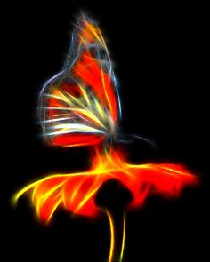 Oh, my. All that red. Stunning. Butterfly Fractal - Akvis Neon
