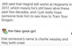 Harry Potter Marauders, Harry Potter Jokes, Harry Potter Fandom, Harry Potter World, Harry Potter Hogwarts, Yer A Wizard Harry, Wolfstar, Hedwig, Drarry