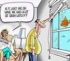 Cartoonist Gary Varvel: Enough rain already Rain Humor, Rain Meme, West Coast Living, Funny Jokes, Hilarious, Funny Humour, It's Funny, Sayings And Phrases, Really Funny