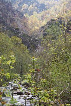 Ruta del Alba, #rutas de senderismo #Asturias