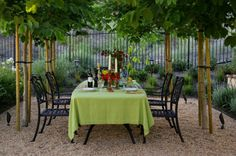 Styles and Tips for Al Fresco Dining. al fresco, dining, outdoor living, green table cloth, trees, trimmed trees, pea gravel, patio, landscape design
