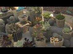 How to make faux concrete pots, planters - YouTube