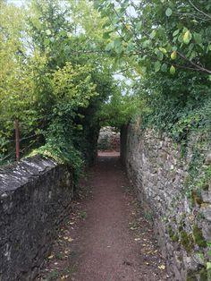Jardins, Boulay sur Moselle